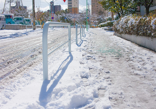 雪が積もる道